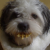 Profilbild von Tc-Venn